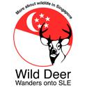 wildlifeinsingapore_125x125