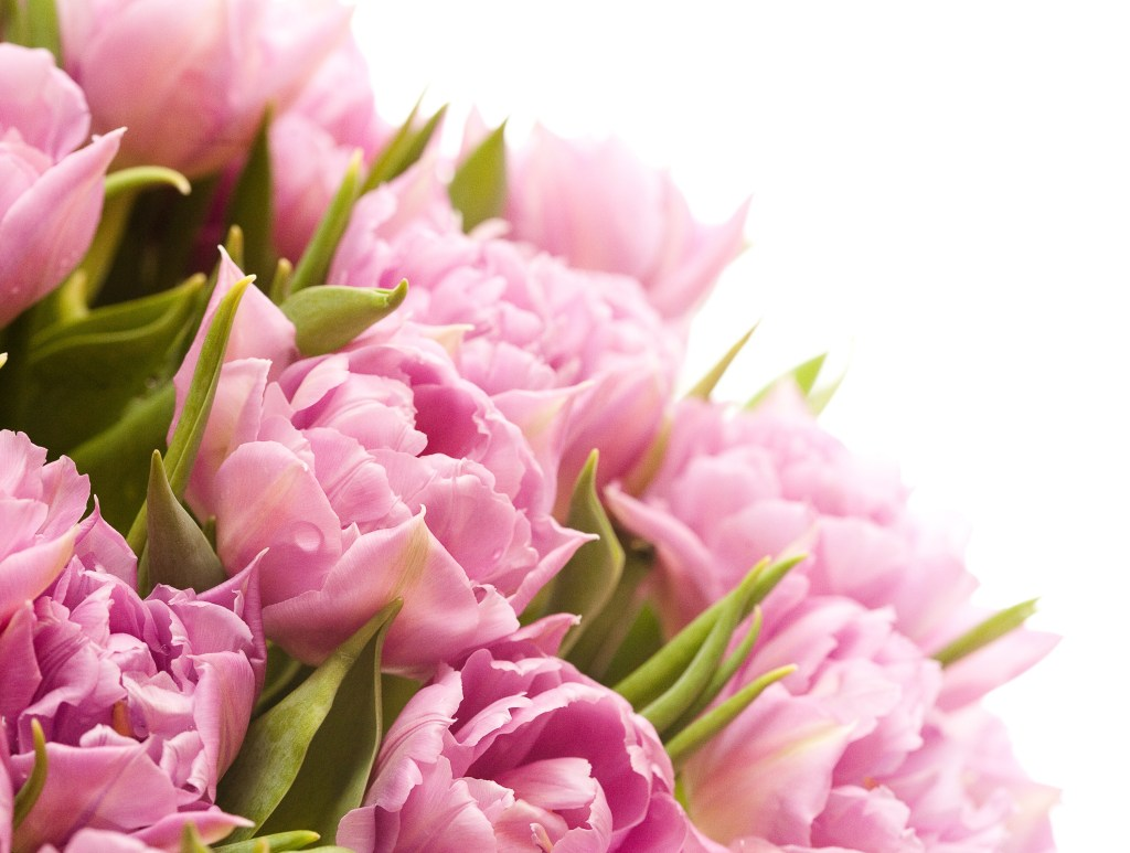 3floral-perfume-category